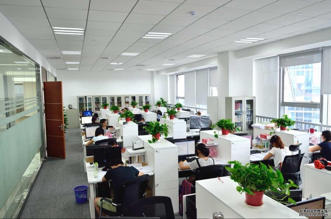 在新办公楼工作的同事们